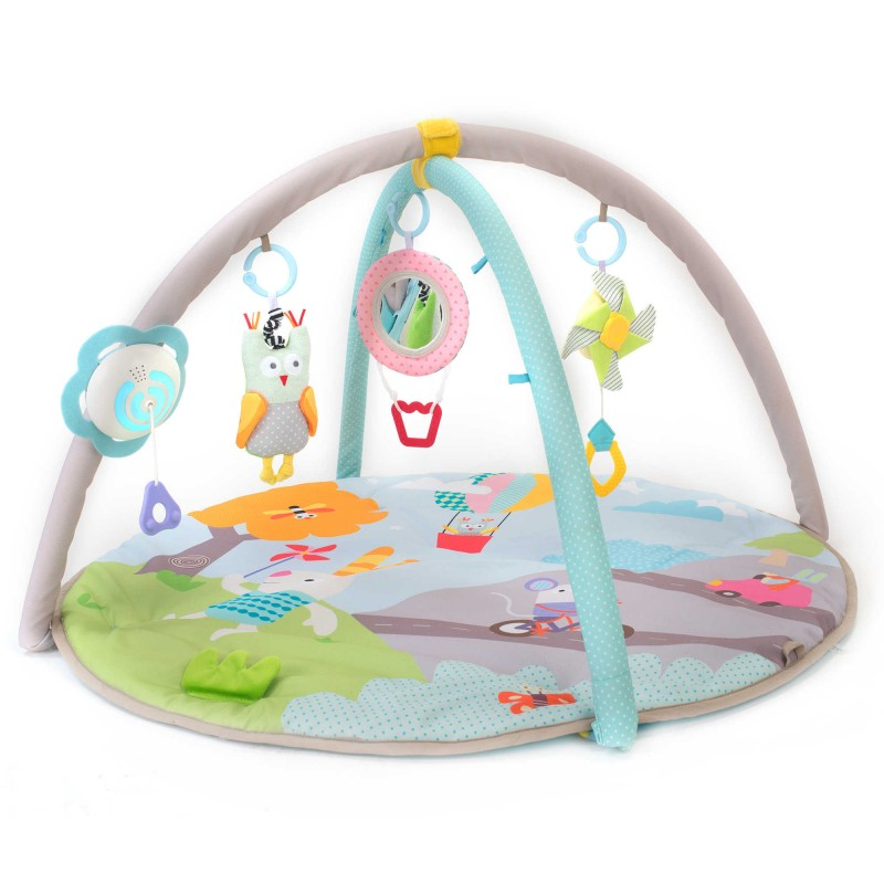 Taf Toys™ Musical Nature Baby Gym